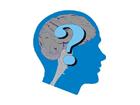 Autoconocimiento  inteligencias pensamiento y emociones felicidad competencia inteligente, depresión responsabilidad rabia miedo tristeza conciencia infelicidad