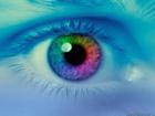 Pensamientos y Emociones Relaciones Creencias sensacion percepcion realidad conductas inconscientes habitos poder de eleccion elecciones inconscientes proceso de elegir envidia celos identidad