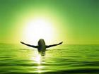 Pensamiento y Emociones Crecimiento Personal motivacion  motivacion  automotivada desmotivada acción productiva preparacion tension creativa urgente  importante Stephen Covey desafios