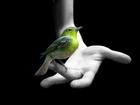 Autoconocimiento Crecimiento Personal poder interior confianza autoestima necesidades humanas básicas relaciones  interpersonales contruir tu autoestima construir tu confianza