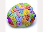 Exito Autoconocimiento creatividad proceso creativo personalidad  capacidad habilidad persistencia tenacidad
